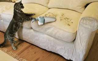 Как убрать пятно от кофе с дивана?