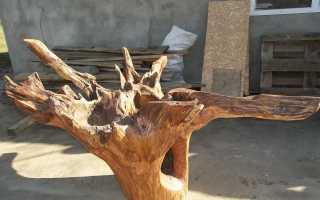 Как сделать стол из корней дерева?