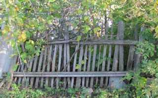 Чем красить металлический забор чтобы не ржавел