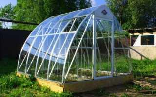 Что лучше для теплицы стекло или поликарбонат
